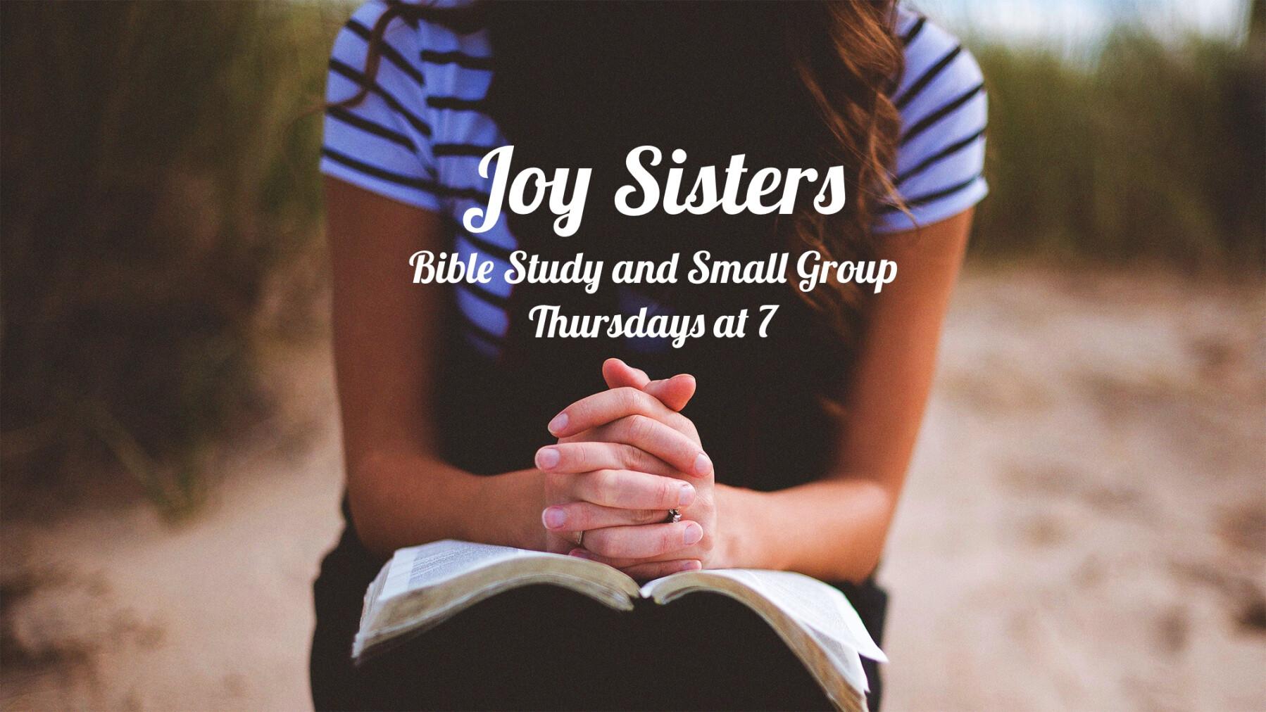 Joy Sisters Bible Study and Small Group